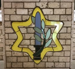 Colored IDF Star Mosaic